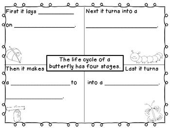 Life Cycle of a Butterfly Four Square Writing