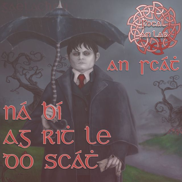 Ná bí ag rith le do scáth. (Don't be running after your shadow, pursuing fantasies)