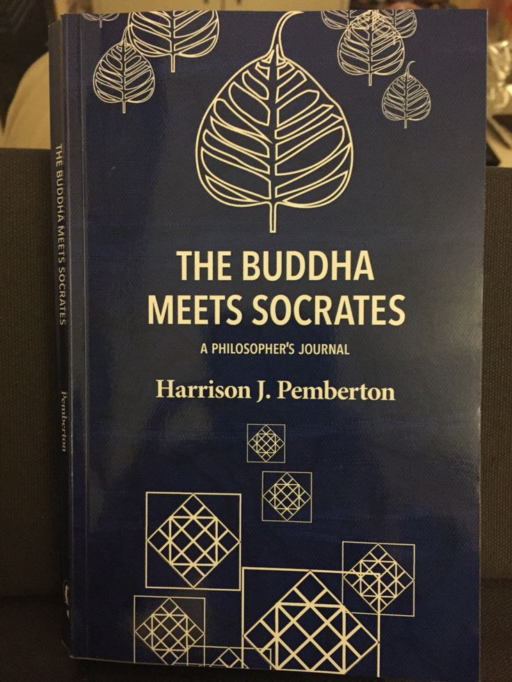 "Just finished a thought provoking book called ""The Buddha meets Sokrates - A Philosopher's Journal"" by Harrison J. Pemberton. The author has been teaching philosophy for over fifty years at universities in the United States. In 2004 he embarked on a journey to teach Western philosophy to Buddhist monks and H.H. the 17th Karmapa Trinley Thaye Dorje. In this book he shared his experience and insights about looking at the work of Western philosophers and comparing it to Buddhist philosophy."