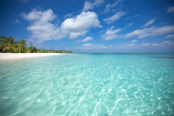 MaldiveFormato da oltre mille isole disseminate nel mezzo dell'Oceano Indiano, a circa 500 chilometri dall'India e dallo Sri Lanka, l'arcipelago delle Maldive è l'emblema della natura primordiale ed incontaminata, l'archetipo del paradiso tropicale. Isole ricoperte di palme con spiagge bianchissime, lagune turchesi, acque trasparenti di un oceano che sembra un acquario dai colori irreali, esclusivi resort circondati da mangrovie e specie rare di orchidee.