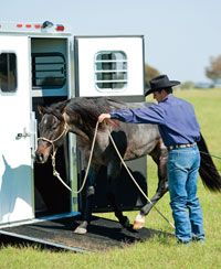 Clinton Anderson puts an end to your horse's trailer loading fears.