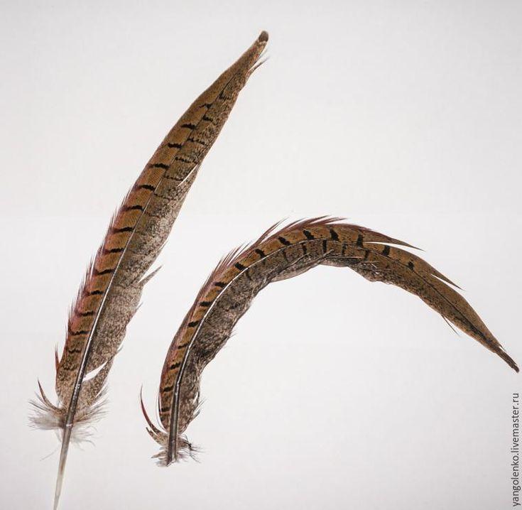 Для того, чтобы изменить перо требуется: - перья; - ножницы; - инструменты для укладки волос: плойка для завивания локонов, шипцы и другие, какие есть в наличии; Что можно сделать из птичьих перьев, я писала в своем блоге. Хочу показать несколько способов создания из обычного или необычного пера декоративное и оригинальное. Это один из интересных процессов творчества. 1. Для того, чтобы длинн…