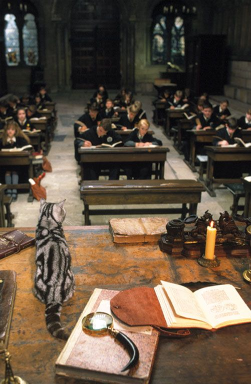 For the first time, I wanna be at school. But not any school - only Hogwarts school of witchcraft and wizardry.