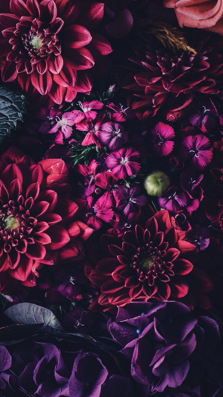 5 Floral Iphone Wallpapers To Celebrate 65k Pinterest Followers Preppy Wallpapers 65k C In 2020 Floral Wallpaper Iphone Preppy Wallpaper Pretty Wallpapers