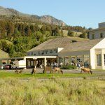 The 5 Best Hotels in Yellowstone National Park, WY (with Prices) - TripAdvisor