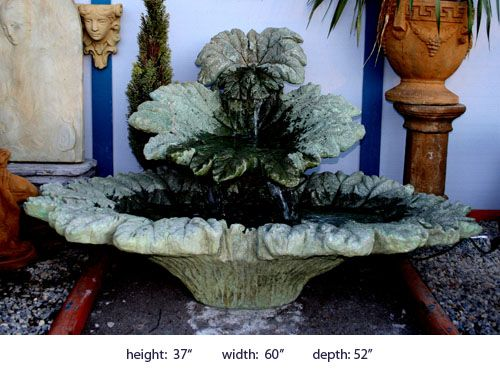 gunnera fountain - darios