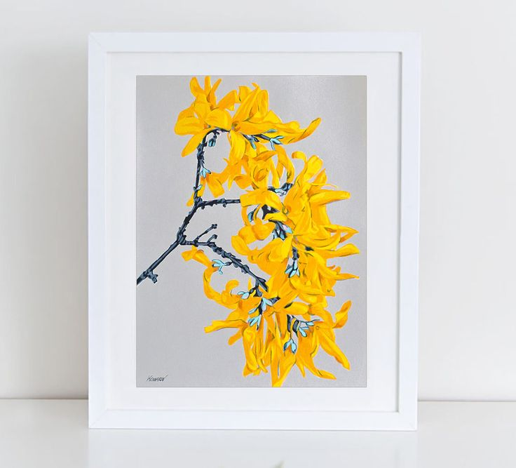Forsythia flowers art print - floral print - botanical artwork - colorful wall art - Forsythia - botanical art - floral wall decor - flower by komarovart on Etsy
