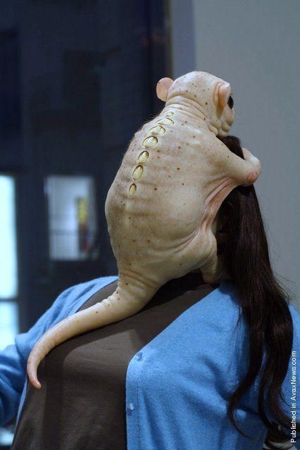 patricia piccinini | Patricia Piccinini, la escultura de la quimera de la cienci… – Münafık Gayretli