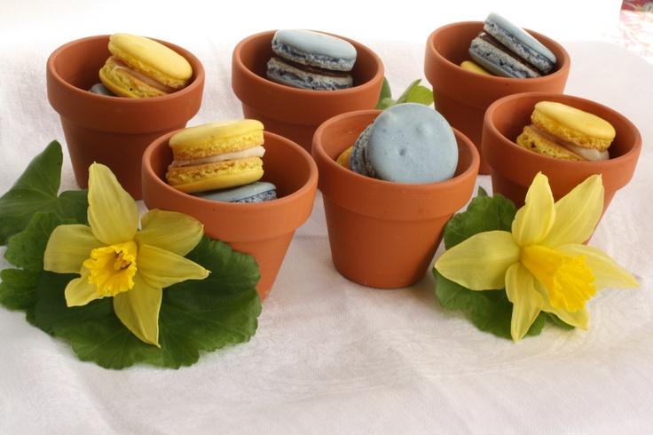 Spring French Macaron wedding favors.