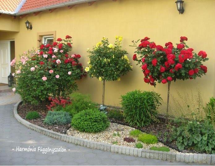 Igényes előkertek - Örökzöldek, virágok színkavalkádja az előkertben. - MindenegybenBlog