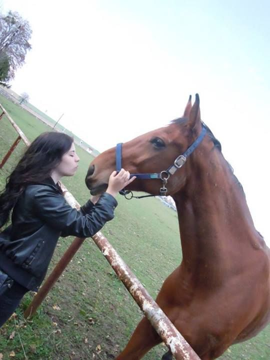 Love horses :)