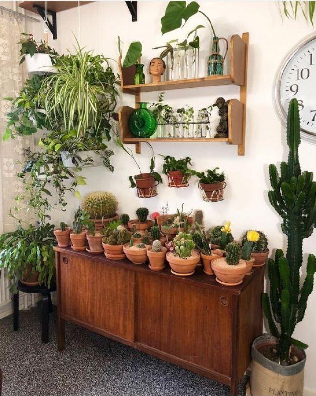 24 Indoor Gardening Ideas You Don T Want To Miss Indoor Plants