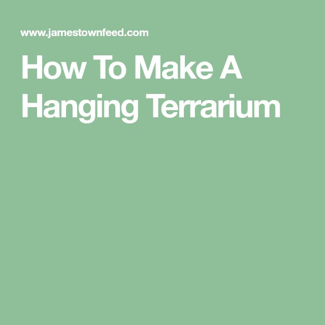 How To Make A Hanging Terrarium