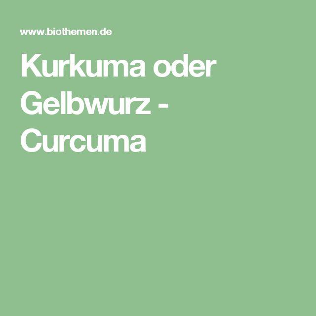 Kurkuma oder Gelbwurz - Curcuma