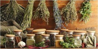 obat herbal wasir ambeien: Obat Herbal Wasir atau Obat Herbal Ambeien Ambecle...