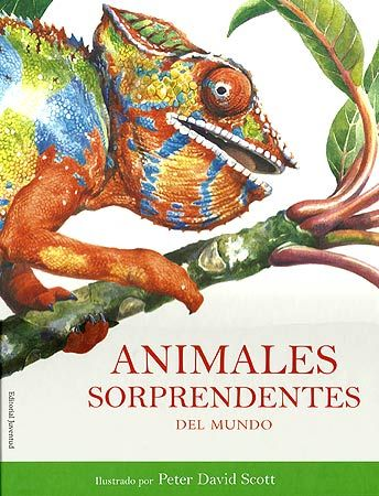 ANIMALES SORPRENDENTES DEL MUNDO / Peter David Scott