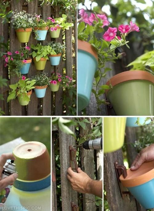 Colorful Vertical Garden On A Fence Pictures, Photos, and Images for Facebook, Tumblr, Pinterest, and Twitter