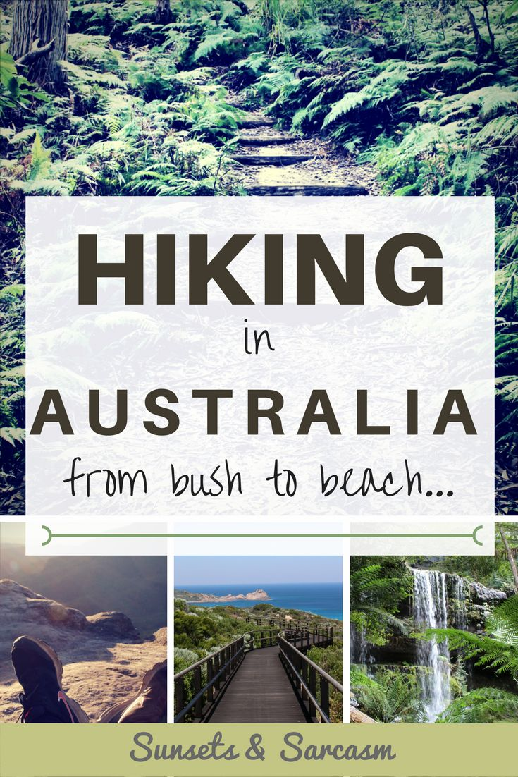 Find out why Australia makes the perfect walking holiday. An overview of hiking in Australia: from bush tracks in national parks to coastal tracks with stunning sea views. Plus pictures from five amazing walks in Australia.