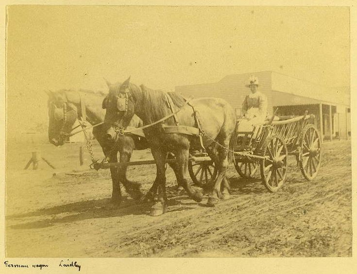 Picture of / about 'Laidley' Queensland - German wagon in Laidley