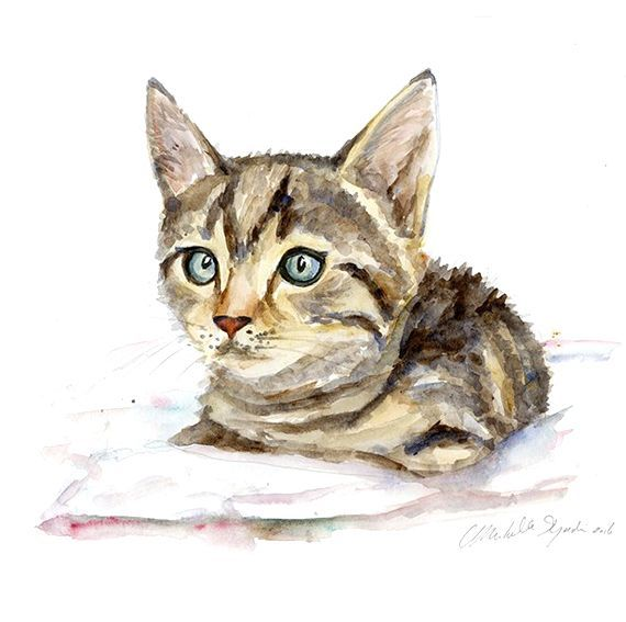 Kitten In Opdracht Custom Painting Projekter