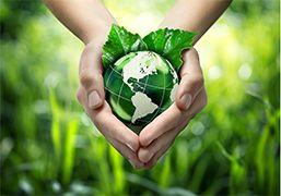 DİKEY BAHÇE FAYDALARI,Dikey Bahçeler,Ekonomik,Enerji Tasarrufu,Çevresel,Toplumsal,Dikey Bahçeler