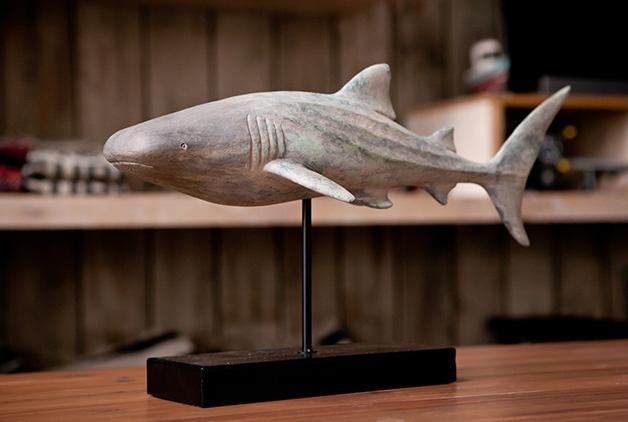 SHARK WTW