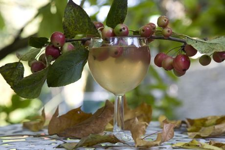 Make Apple and Grape wine by following our simple recipe at Brewbitz Homebrew Shop   http://www.brewbitz.com/Page.aspx?strPage=recipe-grape-and-apple-wine