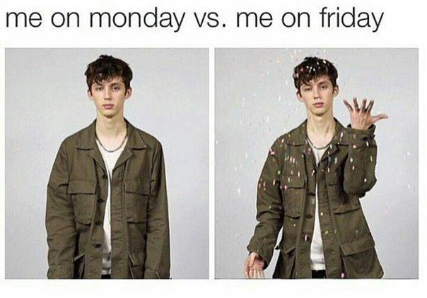 troye memes are honestly what I live for