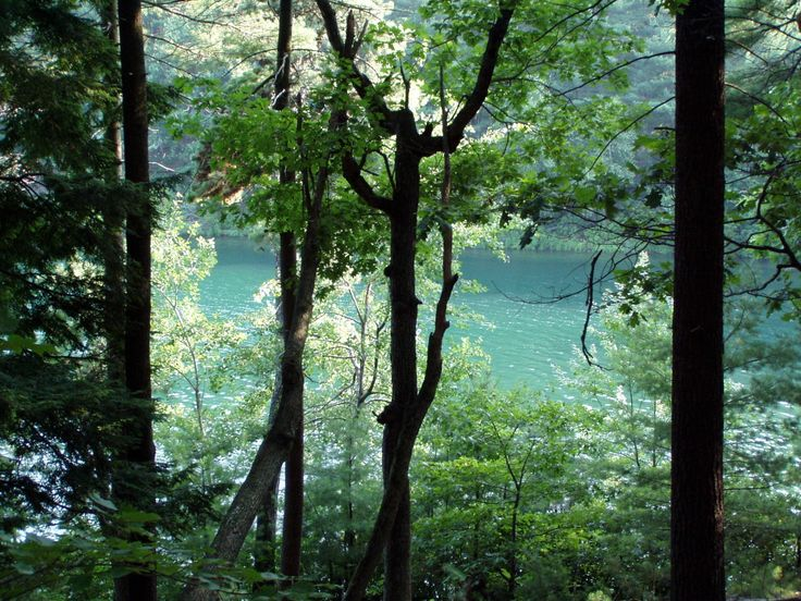 """henry david thoreau walden pond essay In walden thoreau uses a deep pool of metaphorical speech and the continuous and crucial use of anecdotes (or references to his time 2 spent at """"walden pond"""") to focus on the issue and need for """"self-reliance"""" in society."""