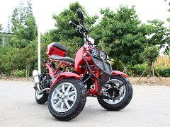 Dongfang 50cc reverse trike on sale at www.countyimports.com