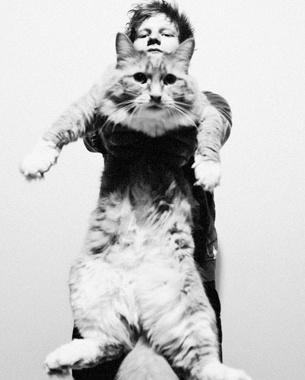 Massive cat!