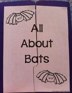 FREE All About Bats Lapbook