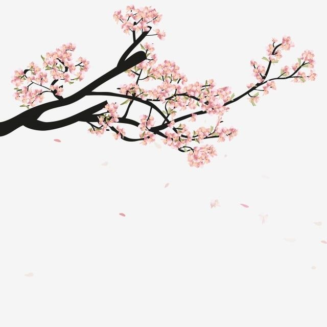Watercolor Sakura Frame Background With Blossom Cherry Tree Branches Branch Clipart Sakura Blossom Png And Vector With Transparent Background For Free Downlo Japanese Blossom Frame Background Branch Vector