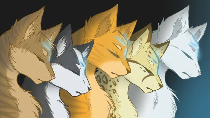 Leafstar of SkyClan Tallstar of WindClan Firestar of ThunderClan Leopardstar of RiverClan Blackstar of ShadowClan