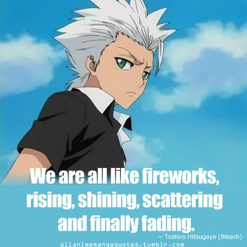 Image result for Hitsugaya toshiro quotes
