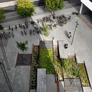 landscape architecture contemporary landscape denmark aalborg plants
