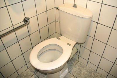 5 techniques pour déboucher les toilettes : Déboucher des toilettes - Linternaute.com Bricolage