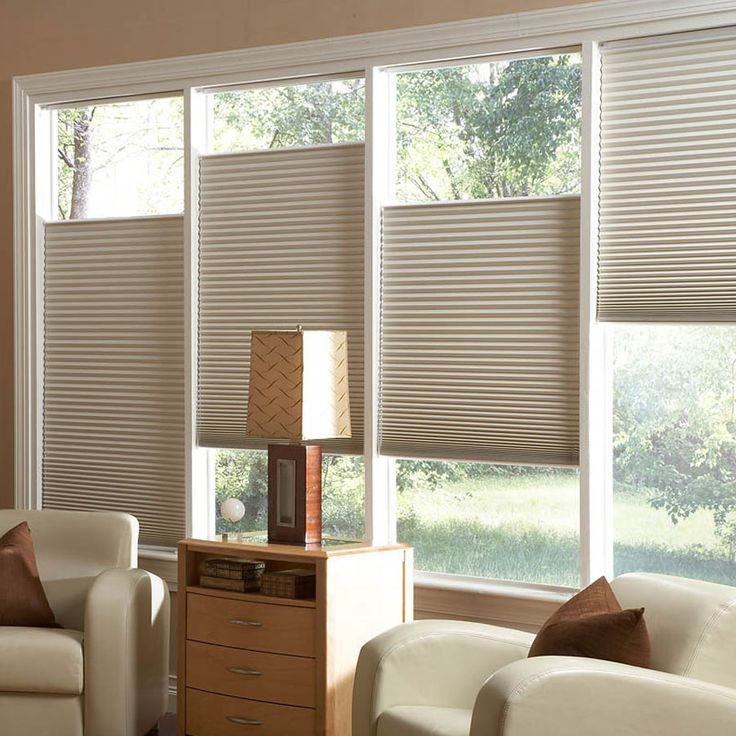 Select Double Honeycomb/Cellular Blackout Shades with top down bottom offer complete customization for privacy and light control. SelectBlinds.com