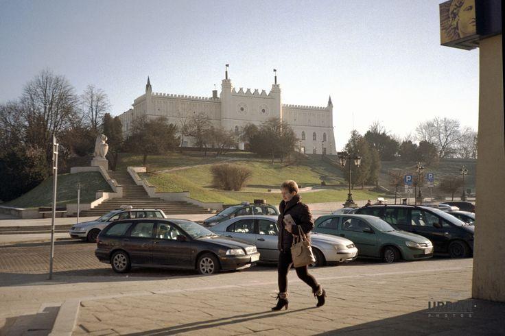 Lublin's Lion