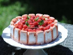 Charlotte aux framboises biscuits roses de Reims - par Vanessa cuisine