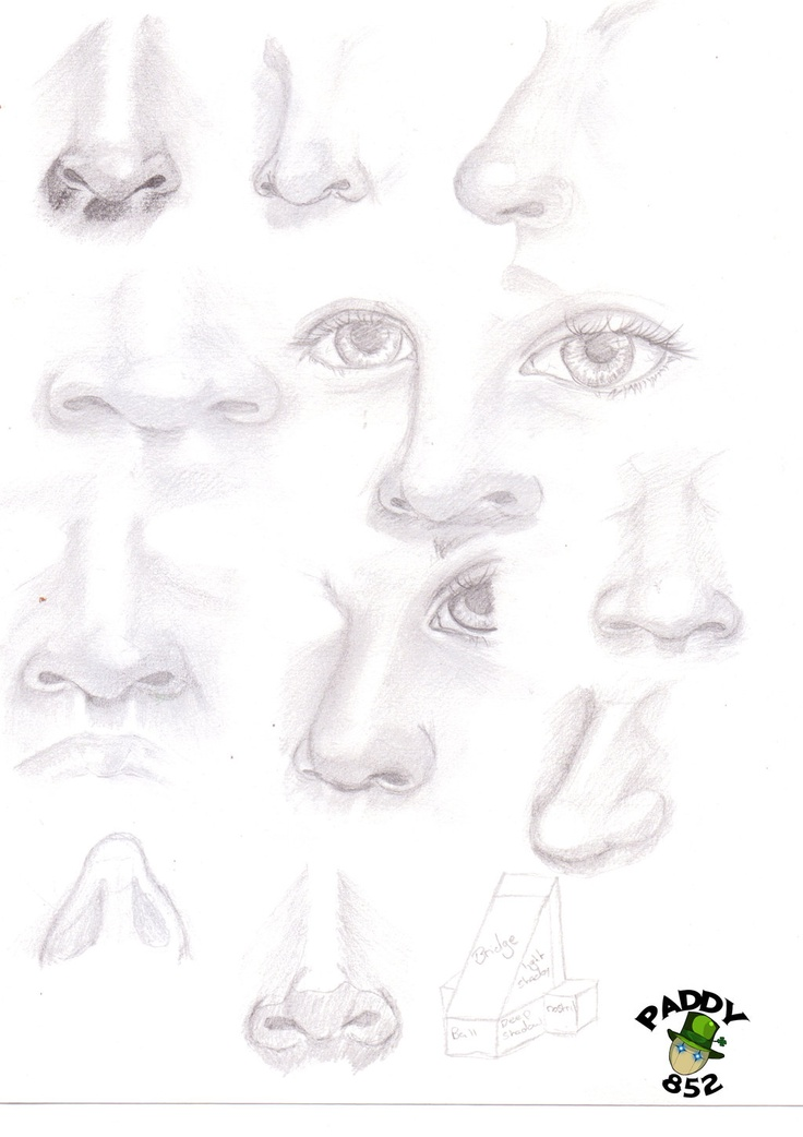 Nose study by paddy852.deviantart.com