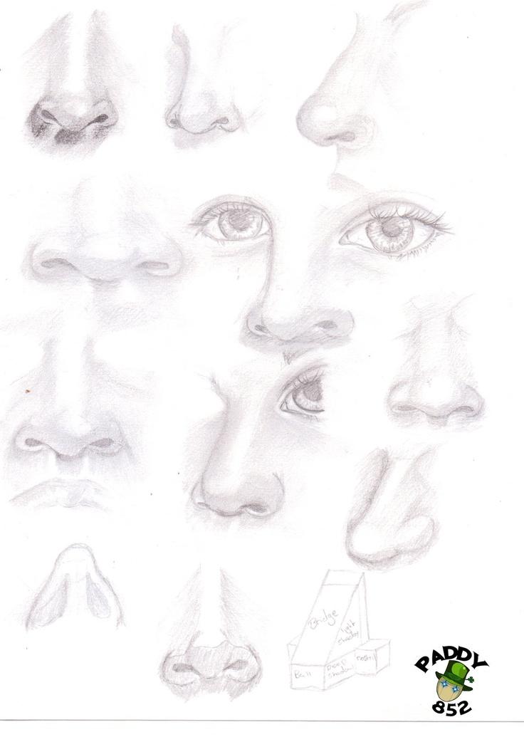 Nose study by paddy852.deviantart.com