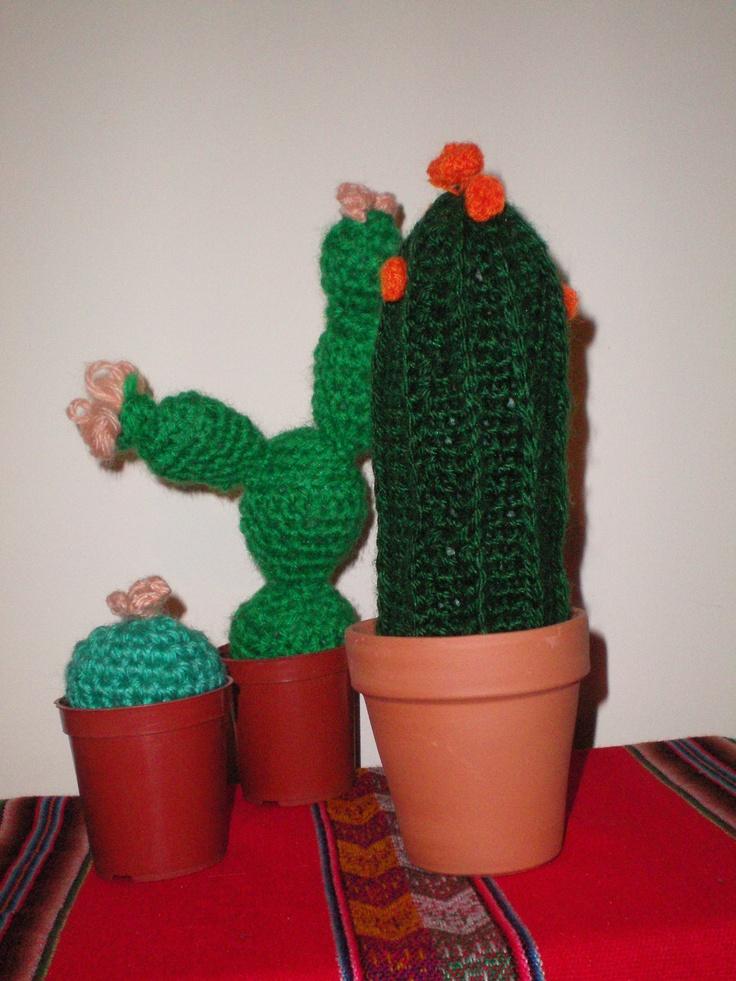 Algunos cactus tejidos, no solo los paisajes de Catamarca tienen distintos tonos de verde