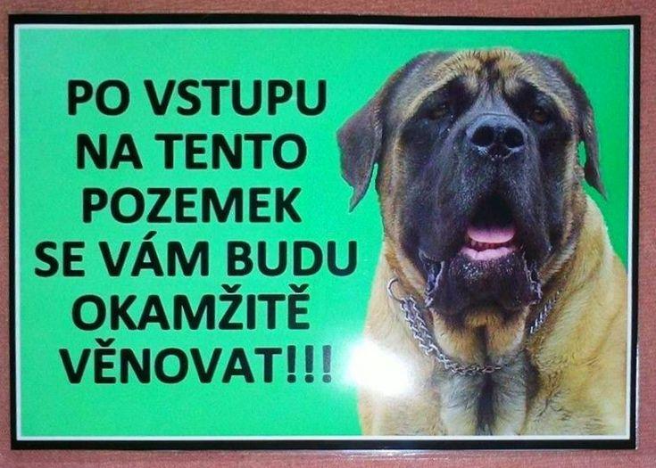 dobrý - fotoalba uživatelů - Dáma.cz