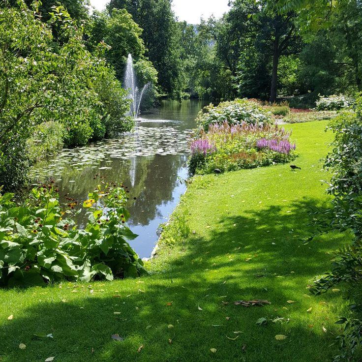 Botanische tuin Utrecht Hortus