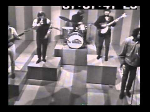 BEST OF SHINDIG PERFORMANCES   49 Years ago today [.8 Jan 2015.] .. the 'Final Shindig' was broadcast on ABC-TV .. Who remembers Shindig... The series aired on ABC from September 16, 1964-January 8, 1966 check out this video and take a walk down memory lane -- some of our fave perform including the Beatles ... http://youtu.be/HBYoZ1N-b88