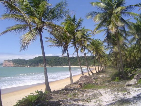 Book your tickets online for the top things to do in Praia de Pipa, Brazil on TripAdvisor: See 19,224 traveler reviews and photos of Praia de Pipa tourist attractions. Find what to do today, this weekend, or in July. We have reviews of the best places to see in Praia de Pipa. Visit top-rated & must-see attractions.