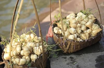 Nutrition Information on Jicama