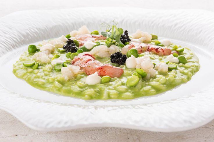 76 migliori immagini i piatti dello chef su pinterest for Decorazioni piatti gourmet