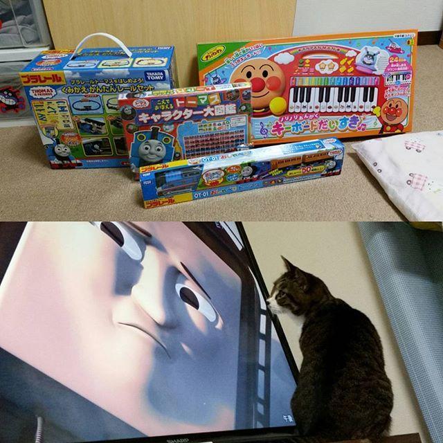 * 昨日は、パパから遅めのクリスマスプレゼントを買ってもらいににみんなでトイザらス行ったあ👜 大好きなトーマスでプラレールデビューした息子🚃 歌と音楽が好きな娘にアンパンマンのキーボード🎹 そして、トーマスを見る【みみ】🐱💓 . #年子兄妹 #トーマス #プラレール #デビュー  #アンパンマン #キーボード #happy #猫 #愛猫 #猫娘 #みみ #かわいい